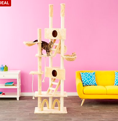 chewy cat tree deal